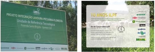 Fotos do Dia de Campo de ILPF na Fazenda Santa Brígida, Ipameri-GO