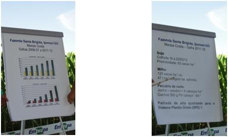 Evolução da produção em 5 safras com a ILPF na Fazenda Santa Brígida, Ipameri-GO