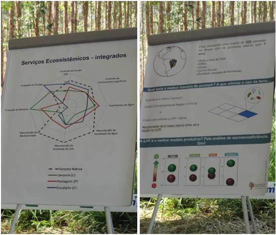 Avaliação da sustentabilidade da ILPF na Fazenda Santa Brígida, Ipameri-GO
